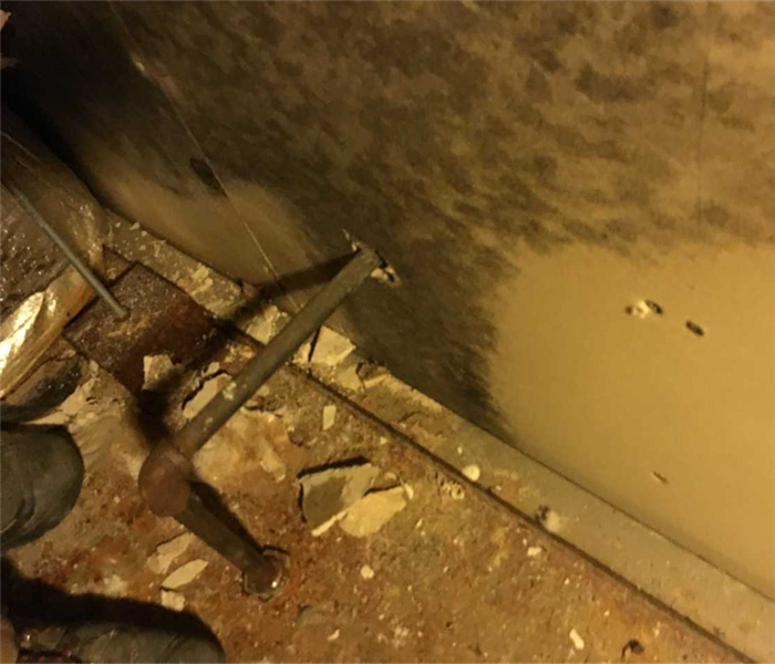 Mold Remediation Is mold lurking in your doorway?!