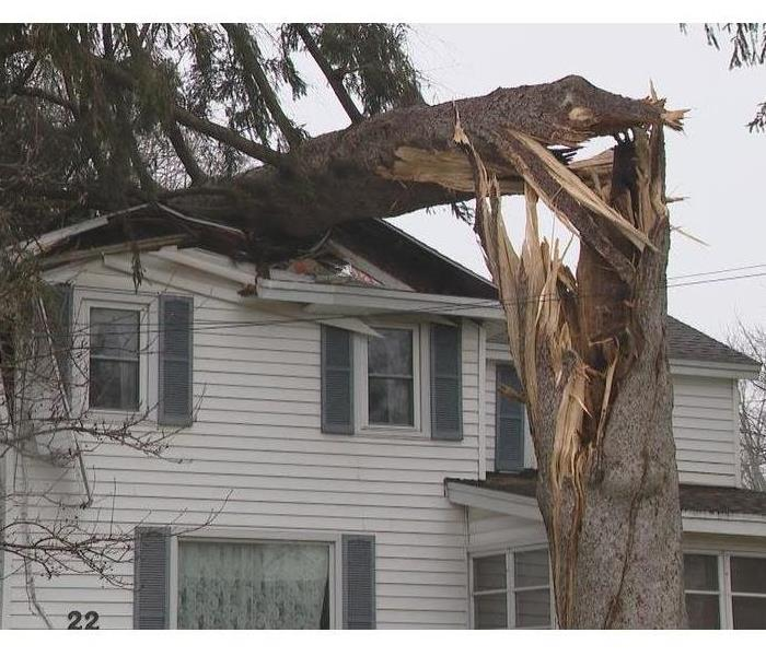 Tree fell on a house.
