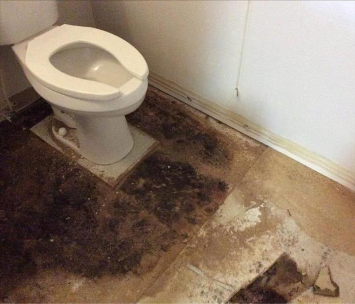 Water leak from the toilet.