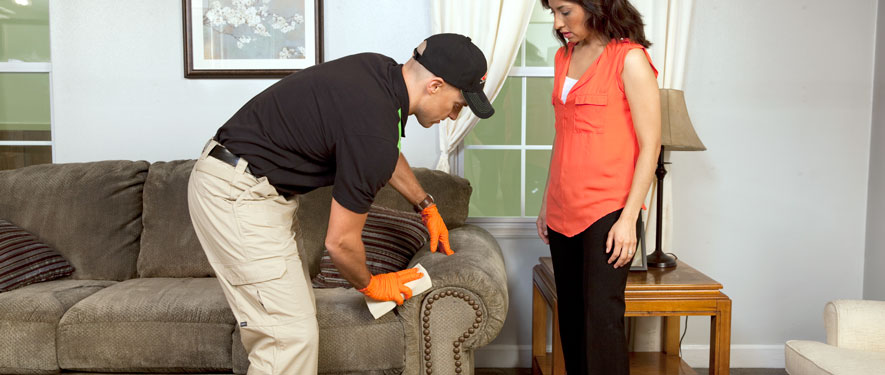 Rexburg, ID carpet upholstery cleaning